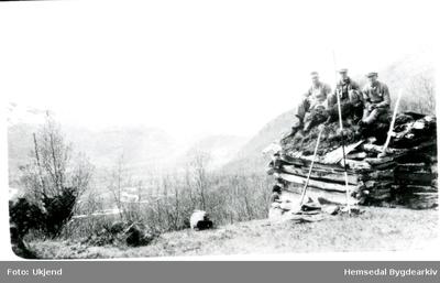 Stikking av Hyddalsvegen i Hemsedal