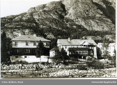 Hemsedal Hotell i Trøym (Kort sendt i 1962)