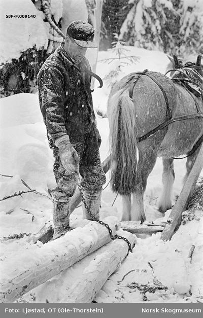 Skogsarbeideren og tømmerkjøreren Ole Rismyr (1931-1984) fra Slettås i Trysil