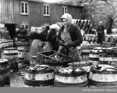 Foto av en kvinne som legger fisk i tønner trolig ved en av Kristiansunds mange brygger omkring 1900-tallet