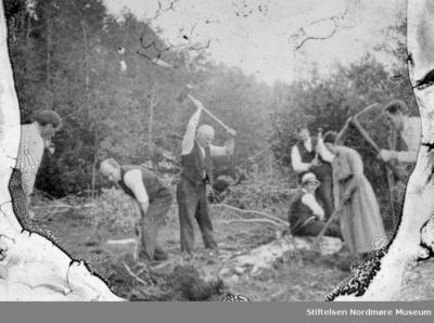 Foto av syv menn og kvinner i arbeid ute på en eng