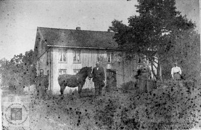 Hestevising på Høye i Øyslebø