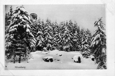 Mösseberg i vinterskrud.