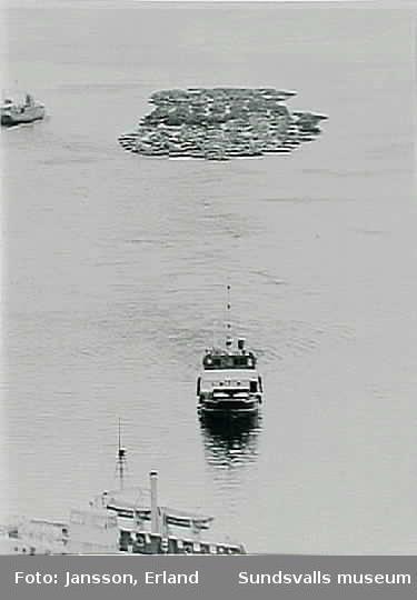 Alnöfärjor samt bogserbåten Galtström med timmersläp