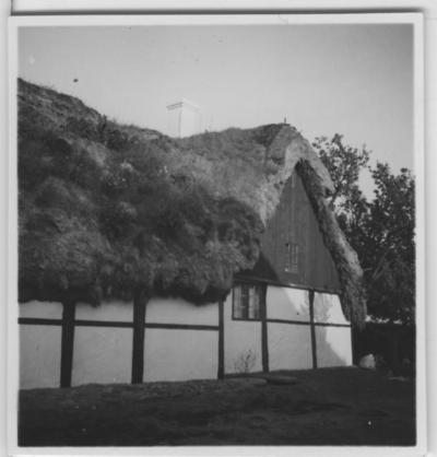 'Biologiska föreningens utfärd till Läsö och Nordre Rönner: ::  :: Bangsbo gård, del av byggnaden, gavel. Korsvirkesbyggnad. Halmtak? ::  :: Se fotonr. 2674-2734, 2687-2691, 2692-2711, 2714-2734, 2843-2863 och 2975 från samma utfärd.'