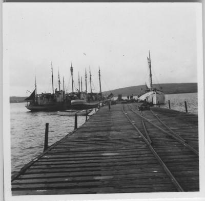 'Från ''Skageraks''-expeditionen till Hebriderna och Shetland: ::  :: Bryggan vid Balta sound: Svenska båtar söndagsvilande i Balta Sound (förminskad version av foto nr 4113:60). Männsikor på bryggan. ::  :: Ingår i serie med fotonr. 4113:1-82.'