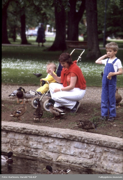 Mössebergsparken, Svandammen 1983.