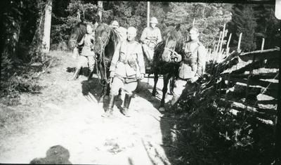 Signalpatrull, A 6. Hästanspänd. Furir C-E Suneson.