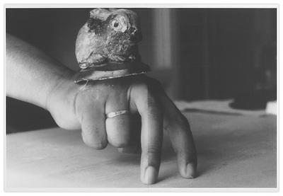 Lapin sur la main