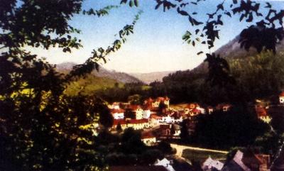 Olănești-Cartierul vilelor