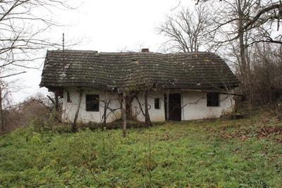 Casă de locuit din Boghiș (nr. 220)