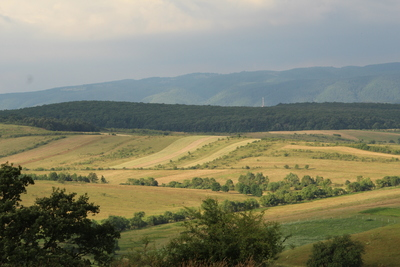 Landscape of Ratin