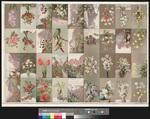 [Andruckbogen mit einer Serie von 32 Ansichtskarten zu Blumenarten]
