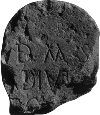 Adiutor, fils de Rogatus fils de Napotis (66 ans)