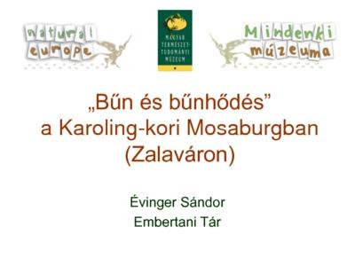 Crime and punishment at the Carolingian Mosaburg (Zalavár) - presentation