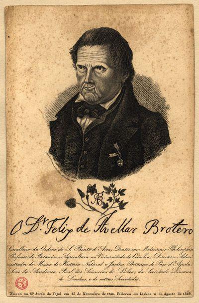 O Dr. Felix de Avellar Brotero: cavalleiro da Ordem de S. Bento de Aviz, doutor em medicina e philosophia, professor de botanica e agricultura na Universidade de Coimbra, ...: nasceu em S.tº Antão do Tojal em 15 de Novembro de 1744, falleceo em Lisboa 4 de Agosto de 1828