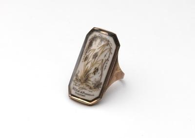 Gouden ring, marquisering met rechthoekig schild, rose ondergrond waarop haarschildering waartussen gouden takjes