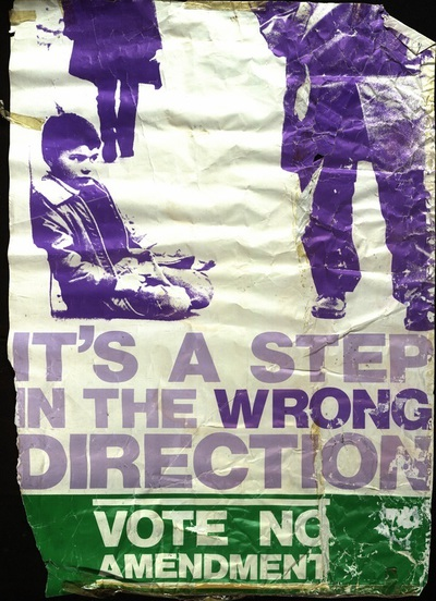 Step in Wrong Direction Anti-Amendment Poster