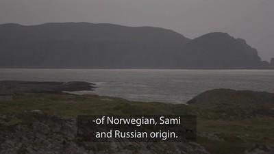 Steinvåg