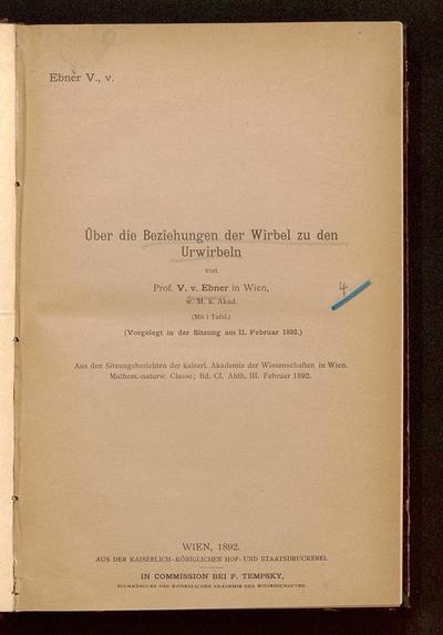 Über die Beziehungen der Wirbel zu den Urwirbeln : (vorgelegt in der Sitzung am 11. Februar 1892)
