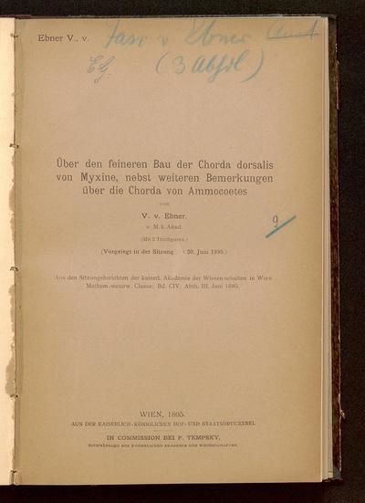 Über den feineren Bau der Chorda dorsalis von Myxine, nebst weiteren Bemerkungen über die Chorda von Ammocoetes : (vorgelegt in der Sitzung am 20. Juni 1895)