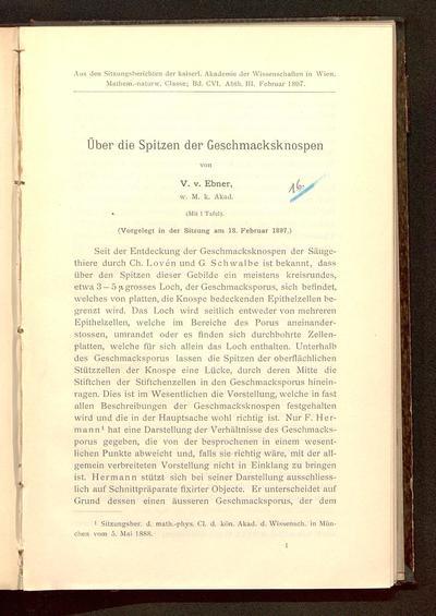 Über die Spitzen der Geschmacksknospen : (vorgelegt in der Sitzung am 18. Februar 1897)