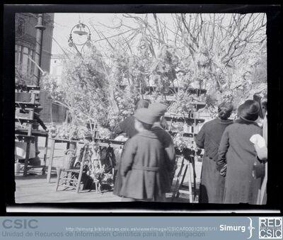 Arxiu d'Etnografia i Folklore de Catalunya   Recuperación y descripción de material gráfico   Fotografías; [ Venda de rams i palmes]