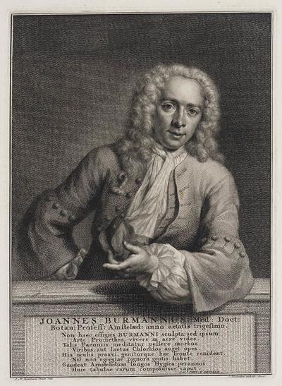 Portret Johannes Burmannus