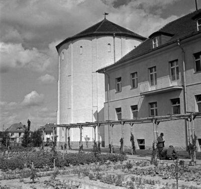 Kaiser Wilhelm Gesellschaft