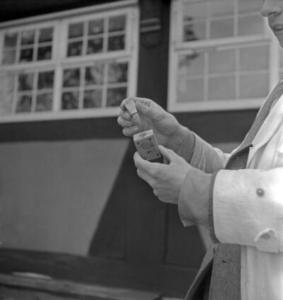 Laves Landesinstitut für Bienenforschung