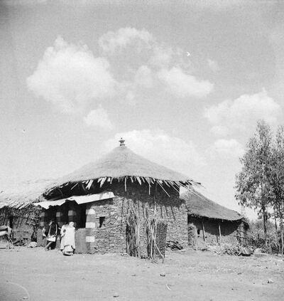 Debra Tabor: botteghe indigene