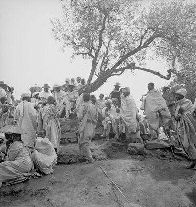 Gondar: l'albero di giustizia al mercato