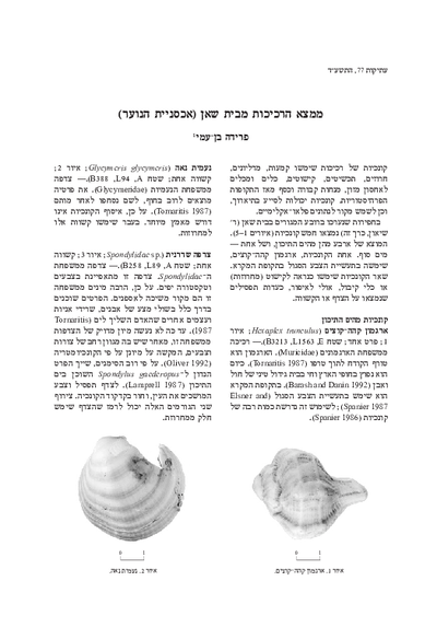 Mollusk Shells from Bet She'an (Youth Hostel) (Hebrew pp.149–151; English summary, p. 132*)