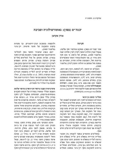 Yavne-Yam (North): Geomorphology and Environment (Hebrew, pp. 59–67; English summary, pp. 120*–121*)