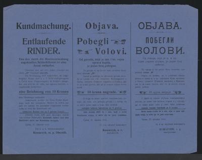 Entlaufene Rinder - Kundmachung - Čačak - Mehrsprachiges Plakat