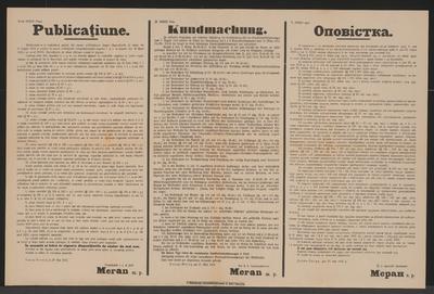 Ergänzungen und teilweise Aufhebungen zu Standrechtbestimmungen - Kundmachung - Dornawatra - Mehrsprachiges Plakat