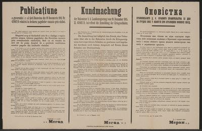 Anmeldung von Kriegsschäden - Kundmachung - Dornawatra - Mehrsprachiges Plakat