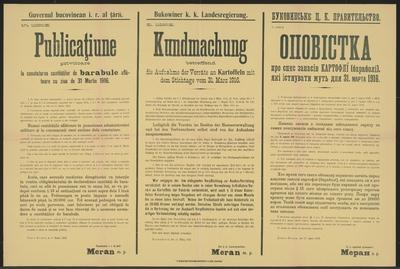 Vorratsaufnahme von Kartoffeln - Kundmachung - Dornawatra - Mehrsprachiges Plakat