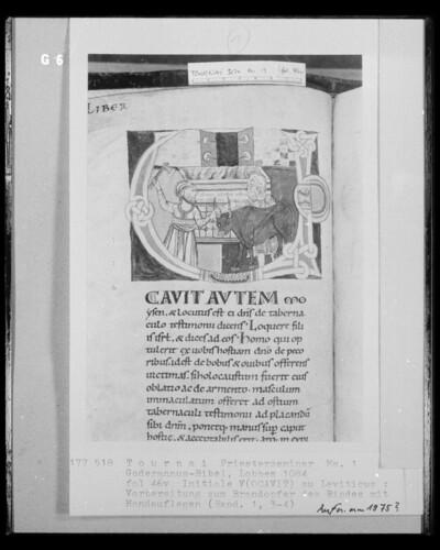 Ms. 1, Goderannus-Bibel, fol. 46v, Initiale V, Vorbereitung zum Brandopfer des Rindes mit Handauflegen (Exodus 1, 3-4)