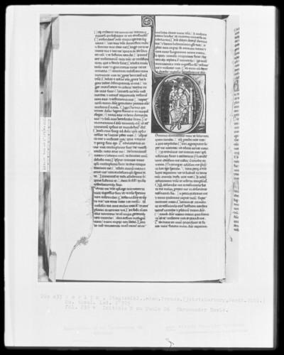 Heisterbacher Bibel — Initiale D (ominus) mit thronendem David, Folio 235verso