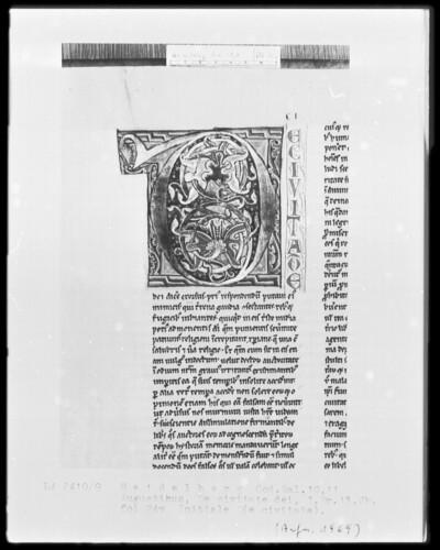 De civitate dei des heiligen Augustinus — Initiale D(e civitate), Folio 24verso