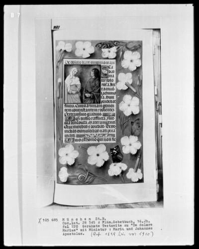 Flämisches Gebetbuch — Maria und der Apostel Johannes, Folio 220recto
