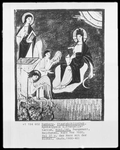 Apokalypse und Evangelistar — Apokalypse des Johannes — Der Menschensohn mit der Sichel, Folio 37recto