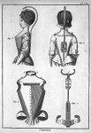 [Planche relative à la gibbosité / Appareils orthopédiques  de Roux et de Levacher pour la colonne vertébrale]