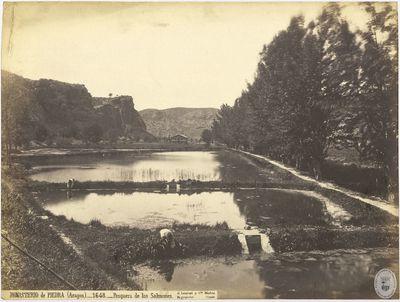 Monasterio de Piedra (Aragón) [Material gráfico] : 1648 : Pesquera de los salmones