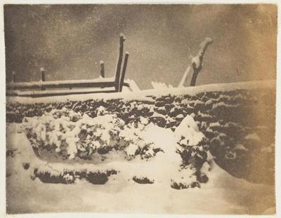 tirage photographique ; Dans le jardin de Marine Terrace, un jour de neige