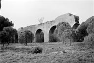 Vue générale d'une partie des arches dans le parc (Château Aurélien, Fréjus, Var).