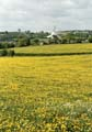 Heage Windmill, off School Lane, Nether Heage, c 2002