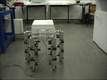 Video of Cassino Hexapod