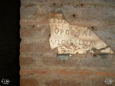 Inscription from Rome, Coem. Priscillae - ICVR IX, 25138